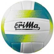 Allround Volleyball white/blue