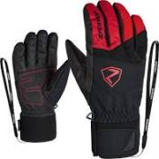 GINX AS(R) AW glove ski alpine red